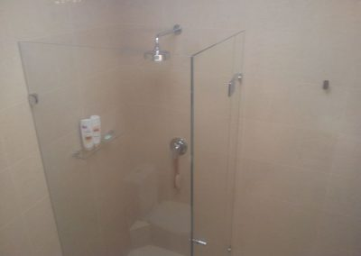 Bathroom Renovation (frameless showerscreen) in Hyde Park