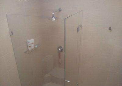 Bathroom Renovation (frameless showerscreen) in Hyde Park